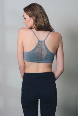 gray-back